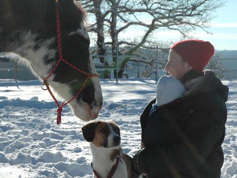 Katharina Grotte Shiatsu und Craniosacrale Körperarbeit in der Freizeit mit Pferd und Hund