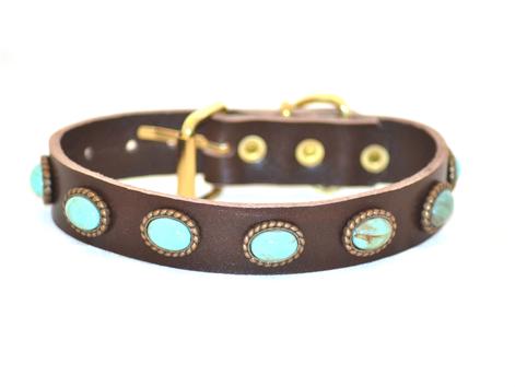 Hundehalsband Leder mit messingfarbenen Fassungen und türkis-mellierten Perlen