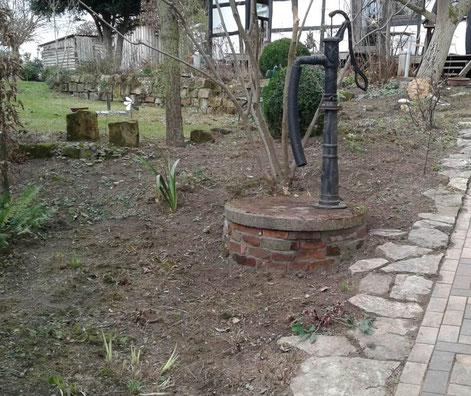 Frühlingserwachen im Korfmacher Garten. Ziegelsteinmauer am Brunnen, Natursteinmauer, Hiddenhausen Februar 2019