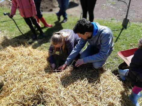 Atelier d'initiation à la permaculture dans une maison d'enfants.