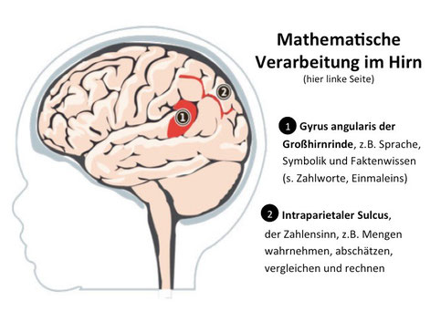 Mathe lernen, Rechenstörungen vermeiden