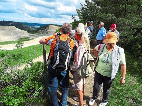 Blick in den Steinbruch: Die Mitglieder des Bürgervereins machen sich ein Bild vom Abbau auf dem Plettenberg. Foto: Privat