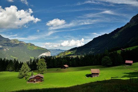 Blich zurück auf Alphütten und Wengen