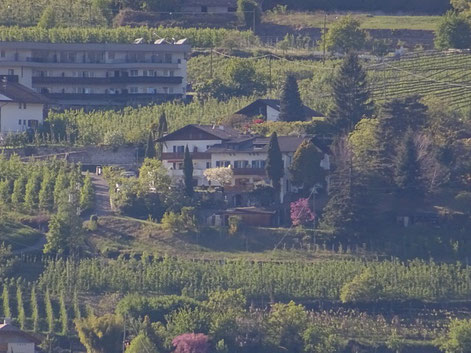 Bild mit Garni Sonnleiten in Dorf Tirol