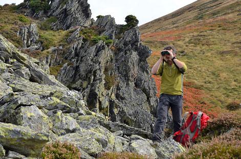 Randonnée pour observer l'isard dans les Pyrénées