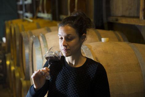 Domaine de Brousse, famille Boissel, AOP Gaillac, vins du sud ouest, vin rouge, vin blanc, Mauzac méthode ancestrale. Duras, Braucol, Loin de l'oeil, cépages autochtones