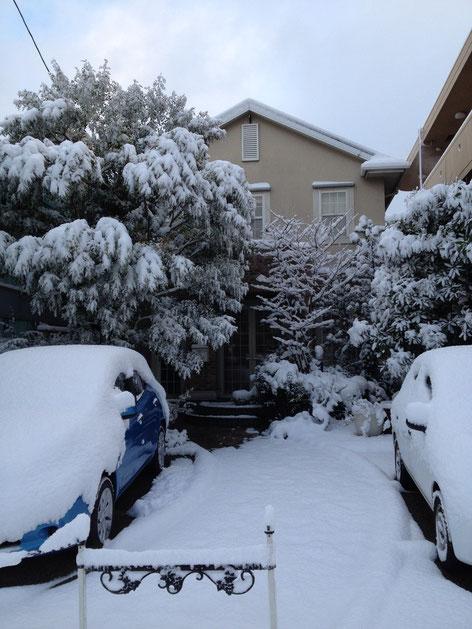 2014年12月18日 名古屋の朝はこれだけ雪が積もっていました