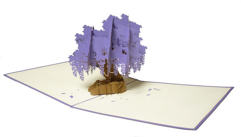 Carte Pop-Up glycine