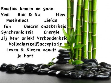 Hypnose, coaching, regressie, burn-out, nabij Rotterdam, Berkel & Rodenrijs, Bleiswijk, Den Haag, Zoetermeer