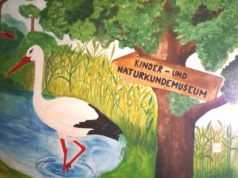 Kindermuseum, Naturkundemuseum, Störche, Bildung, Natur
