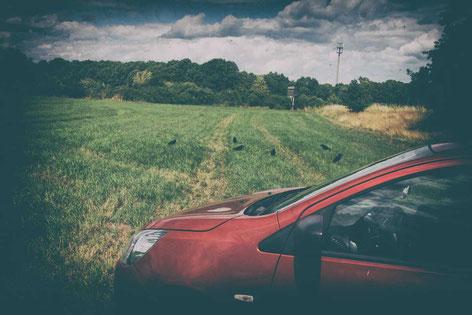 Auto wegstellen bei der Krähenjagd ist ein Gebot