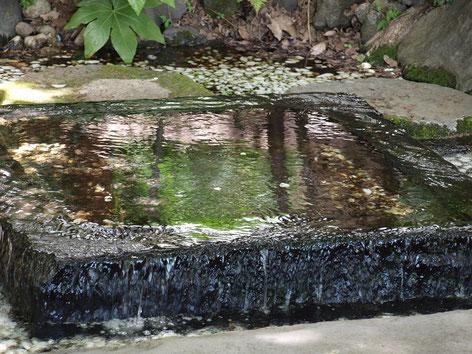 ●井の頭恩賜公園の「お茶の水」。徳川家康がお茶を立てた由来のある水です。スタンプは、公園案内所の入口近くにありました。