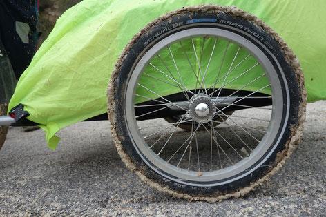 Boue roue radical design