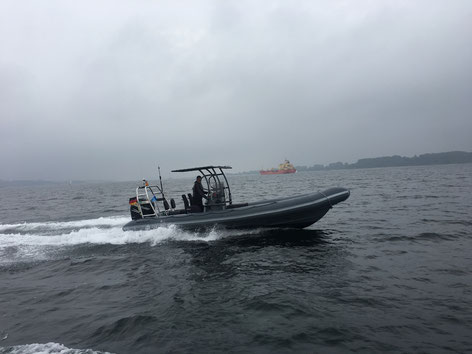 RIB Craft 300PS mit Trailer