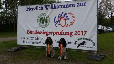 Nur die Besten dürfen bei der Bundessiegerprüfung starten, Foto: Svenja Arendt
