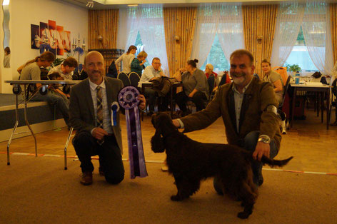 """Winterbourne Move On To Belauer See"" Best in Show under judge Stig Arne Kjellevold, Norway; Photo: Ulf F. Baumann"