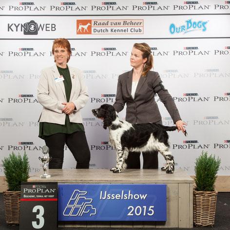 """""""Jolanthe vom Belauer See"""", genannt Zelda, Baby-Wettbewerb, Best In Show 3, Foto: Kynoweb"""