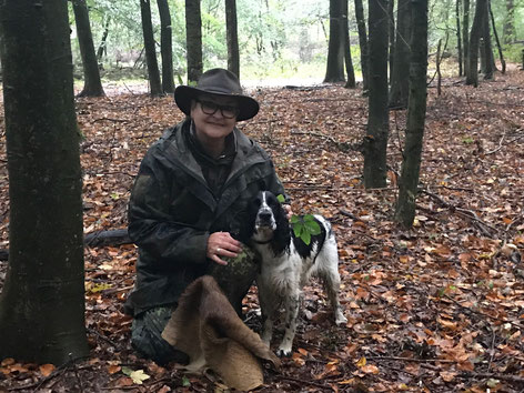 """Luise vom Belauer See"" passes hunting ability trial, Photo: Robert Korff"