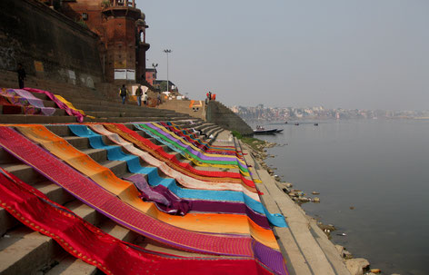 Wäschewaschen in Indien, Indischer Waschtag, Saris trocknen in der Sonne