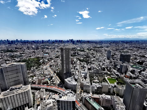 Nerdblick Japan Erfahrung Reise Reiseblog Wie reisen in Japan Odaiba Akihabara Shinjuku Shibuya Ikebukuro Mecha Digital Art Museum