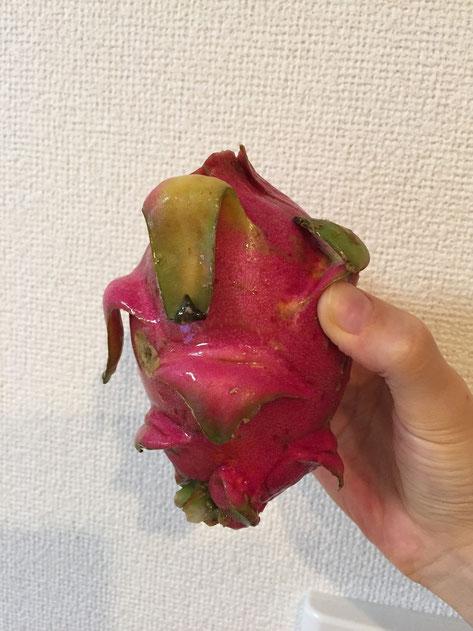 スーパーで買ってきたドラゴンフルーツ。サボテンから採れるって皆さん知ってました?