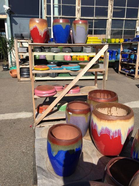 こんなに派手は植木鉢は日本ではなかなかお目にかかれないが、庭にあればすごいアクセントになる