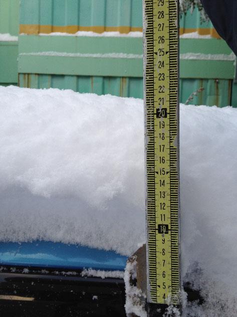 いつもの現場測量用の尺で計測 20cm積もってます 危険レベル