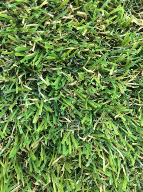 毛の一本一本を見てください。毛が真ん中から折れています。このため、芝の毛自体が強くなるのです。