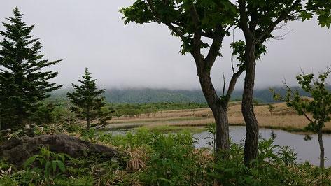 知床五湖自然遊歩道 一湖から 晴れていれば知床連峰が望めます