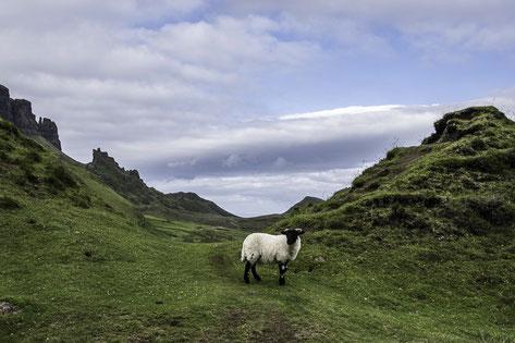 Isola di Skye - Il Quiraing