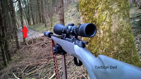 Anschießen der Mauser M12 im Jagdrevier.
