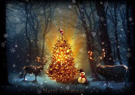 Kurze Weihnachtsgedichte: Der Weihnachtsbaum