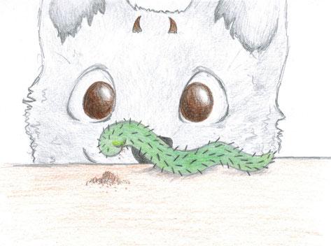 Kaktustierchenfütterung