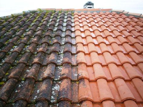 démoussage tuiles, anti-mousse, lichens, hydrofuge,  entretien toiture, mousses