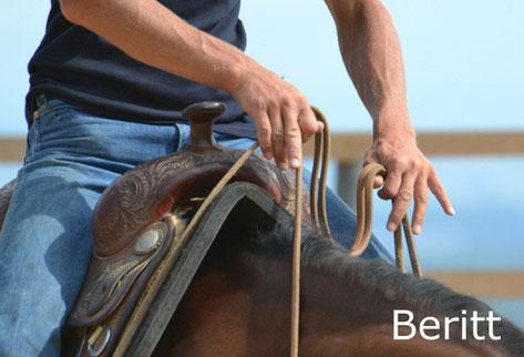 Reinhard Hochreiter bietet Beritt von Reining-Pferden.