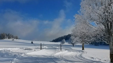 Perfekt präparierte Langlaufloipenn im Berner Jura