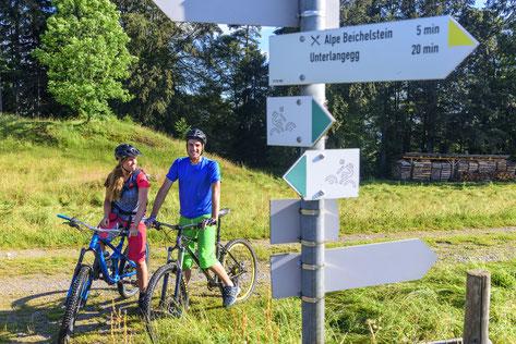 MTB Mountainbike Konzepte Beschilderung Wege Trail Konfliktlösungen