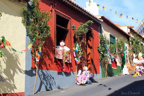 Mayos en Santa Cruz