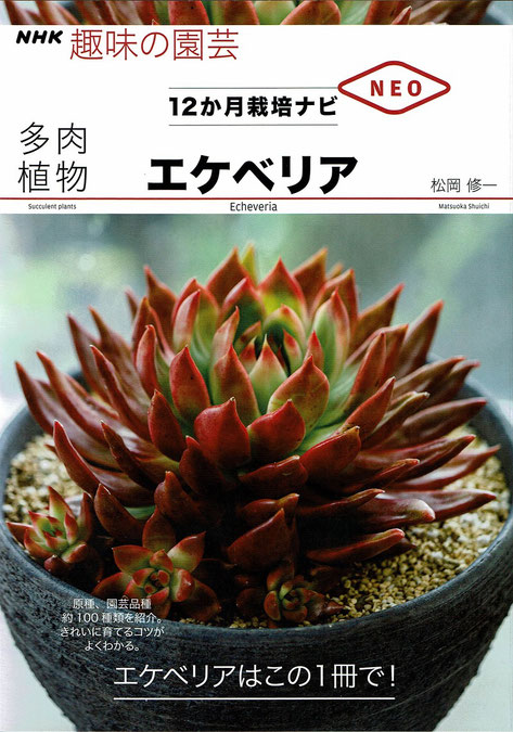 NHK趣味の園芸 12か月栽培ナビ NEO エケベリアを出版しました。