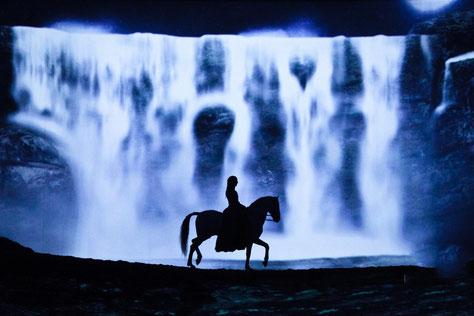 chevaux-en-liberté-en-spectacle-odysséo