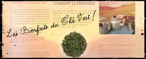 les-bienfaits-du-thé-vert