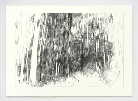 """SOURCE III"" / Graphite / 50x70cm"