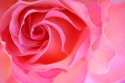 女神アフロディーテ・愛と美のヒーリング 【アジュールプラス】