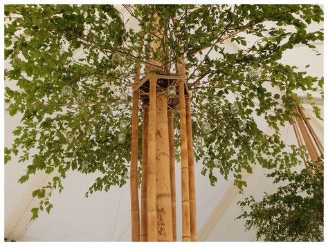tente bambou chapiteau BAMBOU bambouctou structural bambou mariage