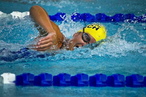 Kraulschwimmen Einführung bis sichere Schwimmausführung