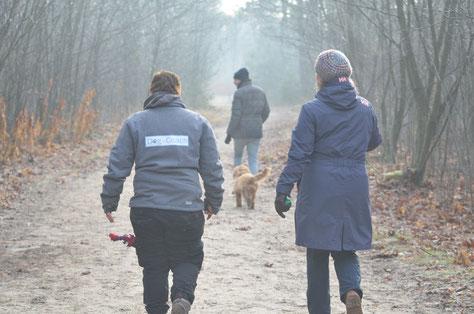 Privélessen met pup Willem