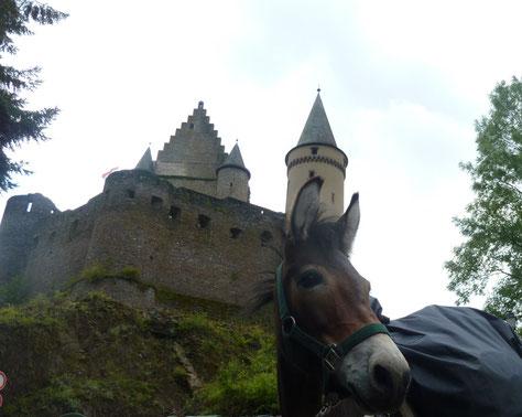 2011/2012/2013: Tour autour de Luxembourg - ca 360 km - emol ronderem eist Ländchen (Foto: Schlass vu Veianen mam Muli Nono)