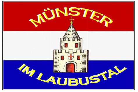 Münster Flagge