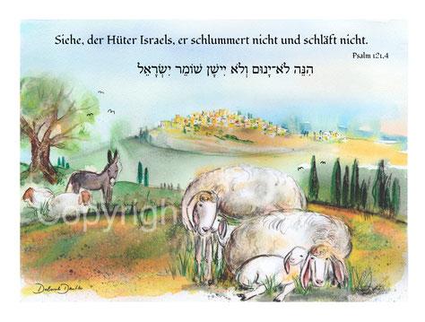 Hüter Israels schlummert nicht, Schafe Orient Esel Stadt