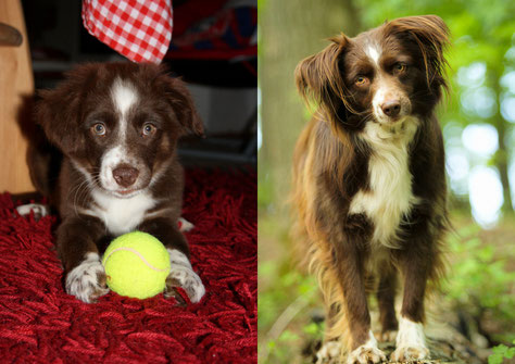 links: 12 Wochen; rechts: 3 Jahre